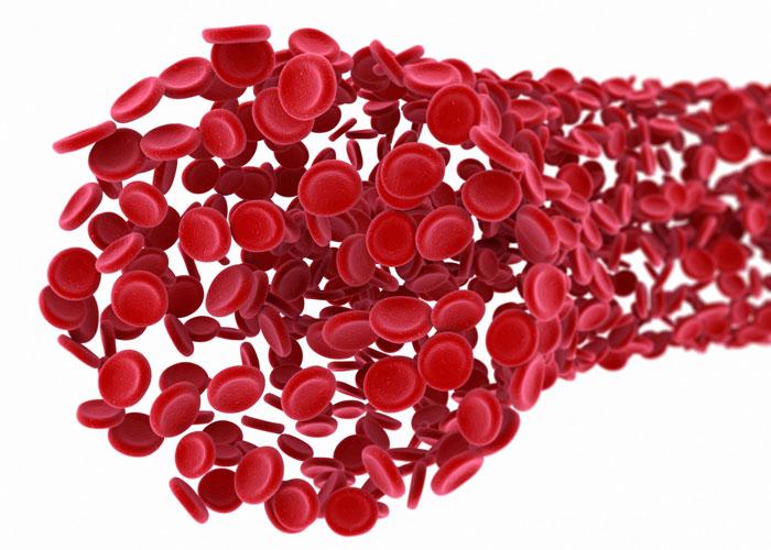 clampaje-sangre